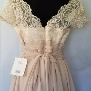 Light in the Box Dresses - LIGHT IN THE BOX CHAMPAGNE LACE & CHIFFON DRESS